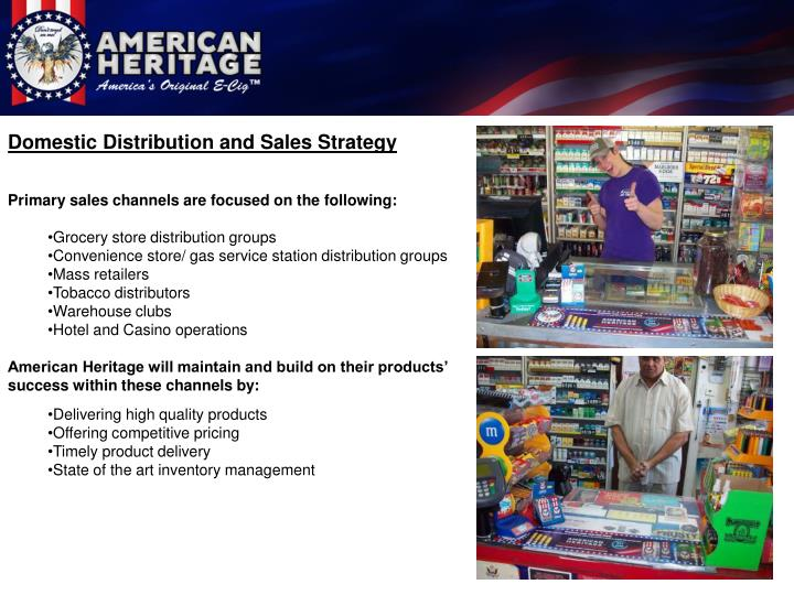 Domestic Distribution and Sales Strategy