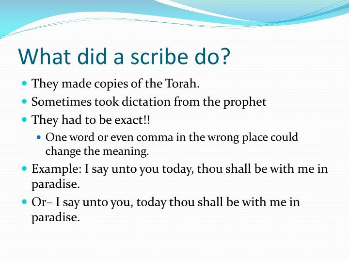 What did a scribe do?