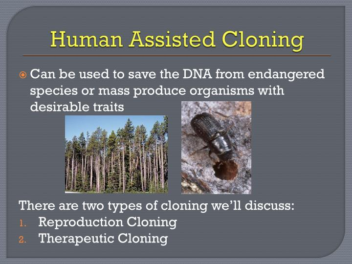 Human assisted cloning