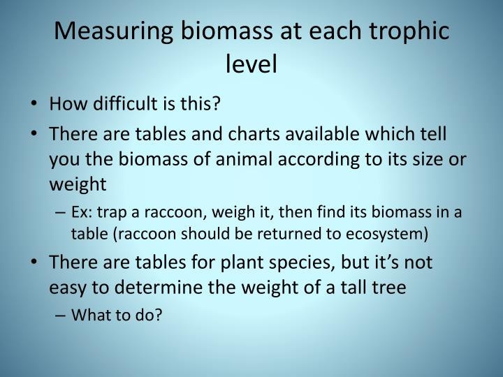 Measuring biomass at each trophic level
