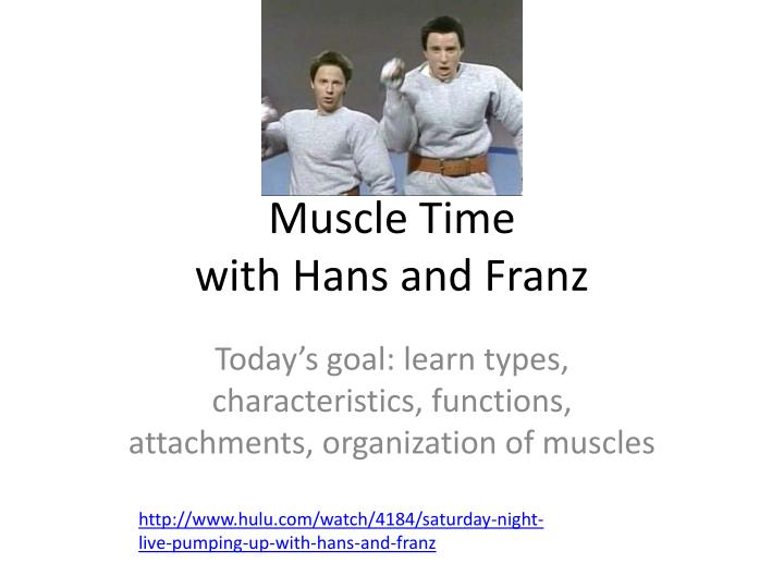 muscle time with hans and franz n.