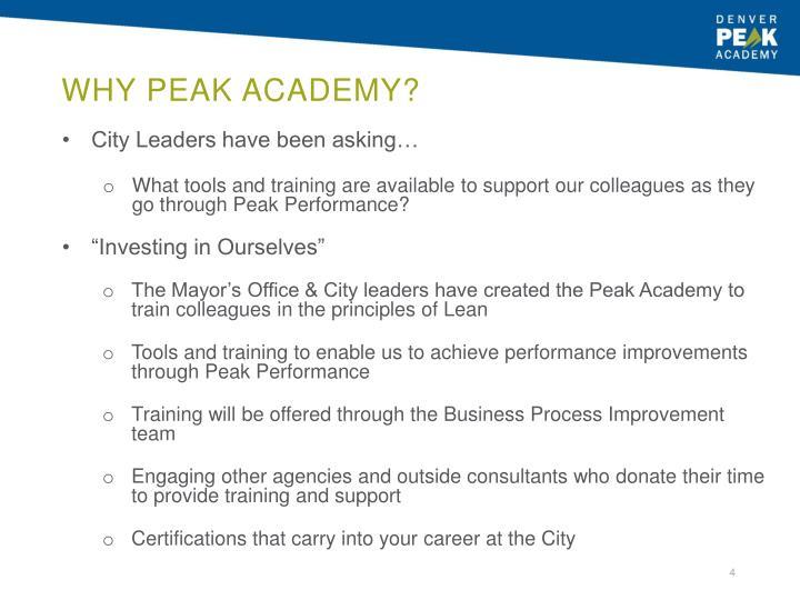Why Peak Academy?