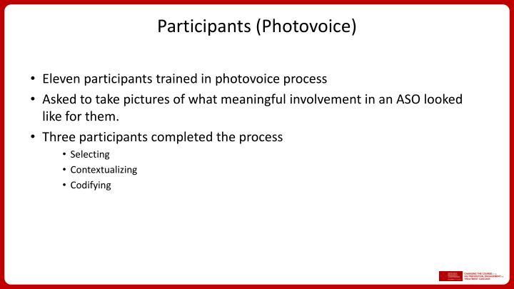 Participants (