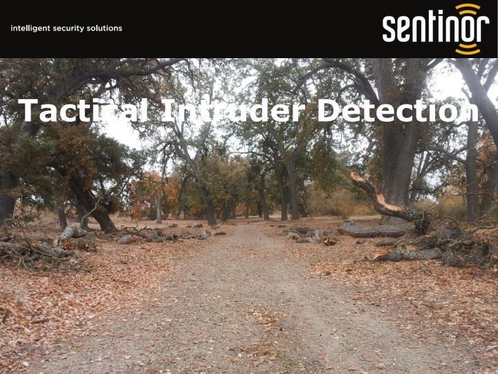 Tactical Intruder Detection