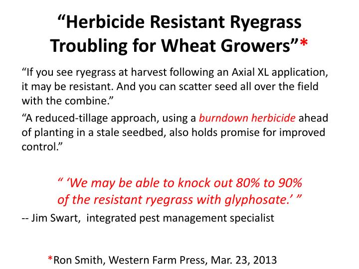 """""""Herbicide Resistant Ryegrass Troubling"""