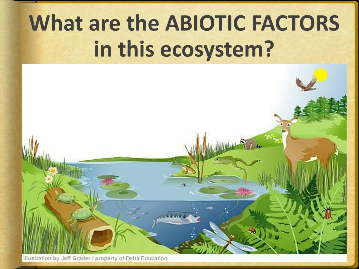 ppt abiotic and biotic factors powerpoint presentation id 2836247