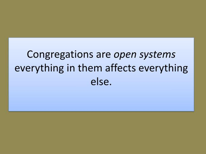 Congregations are open systems everything in them affects everything else