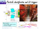 particle identification and l0 trigger1
