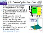the forward direction at the lhc