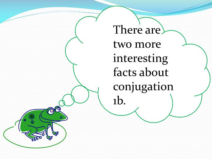 There are two more interesting facts about conjugation 1b.
