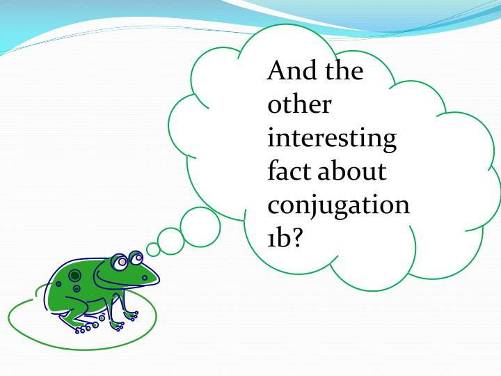 And the other interesting  fact about conjugation 1b?