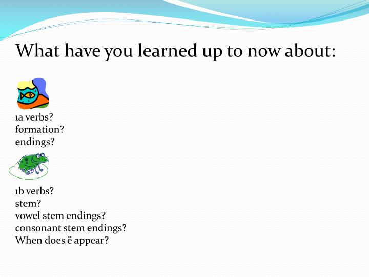 What have you learned up to now about: