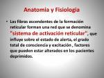 anatomia y fisiologia5