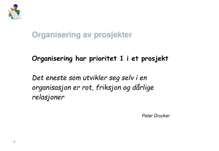 Organisering av prosjekter
