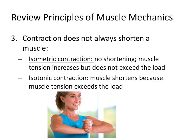 Review principles of muscle mechanics1