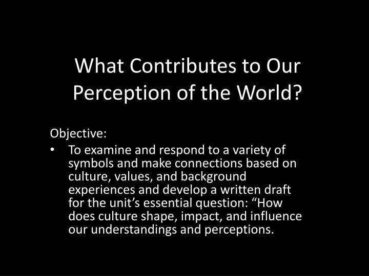 What contributes to our perception of the world
