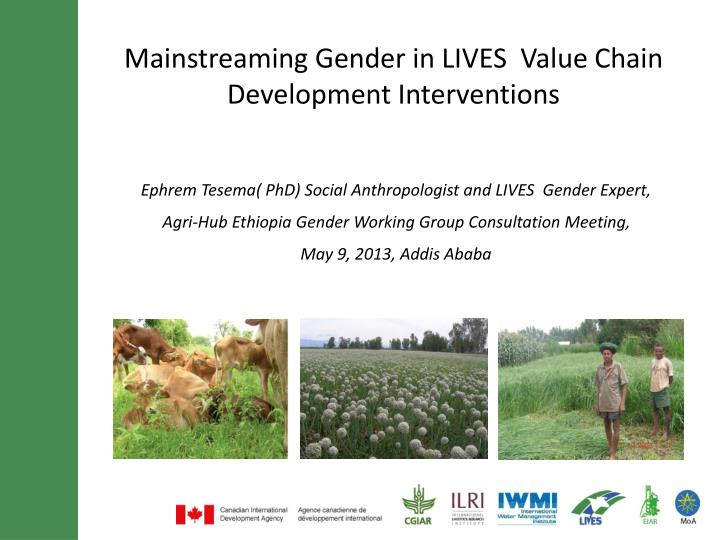 mainstreaming gender in lives value chain development interventions n.