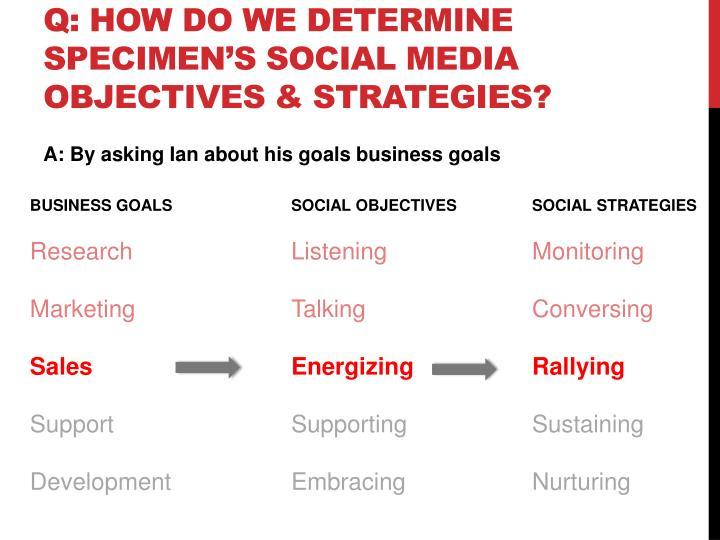 Q: How do we determine Specimen's Social Media objectives & Strategies?