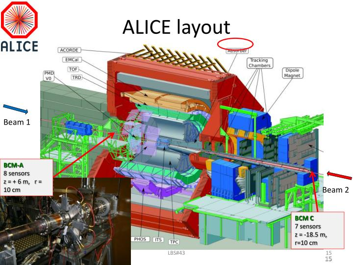 ALICE layout