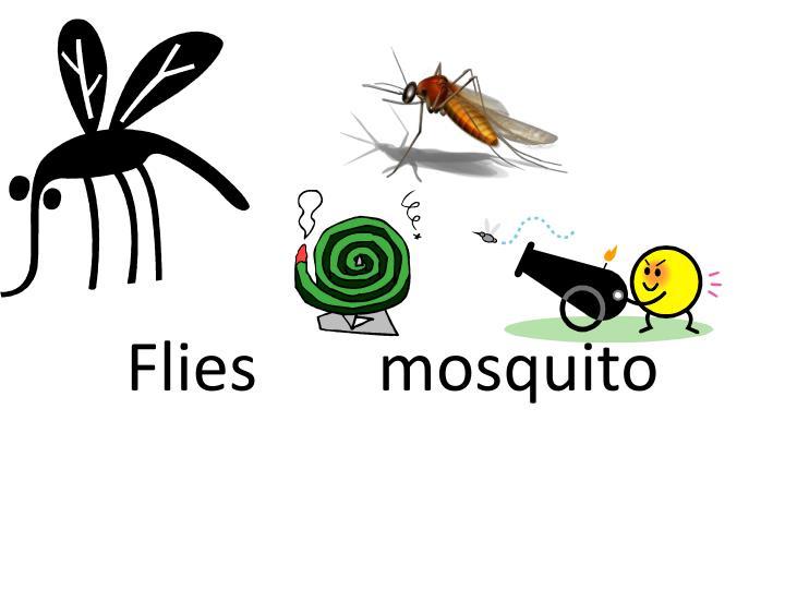 Flies mosquito