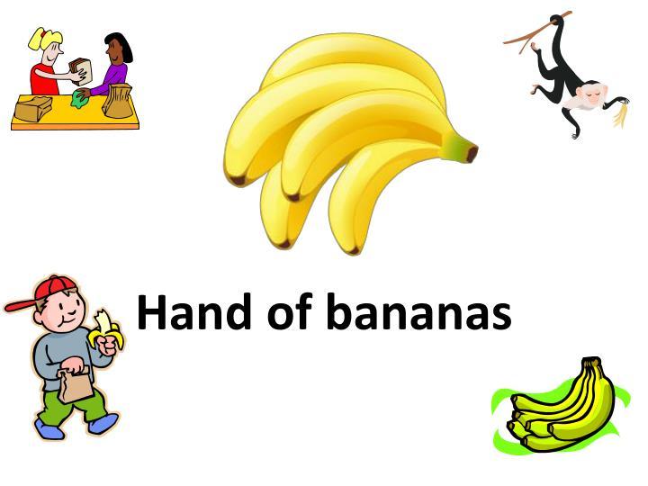 Hand of bananas
