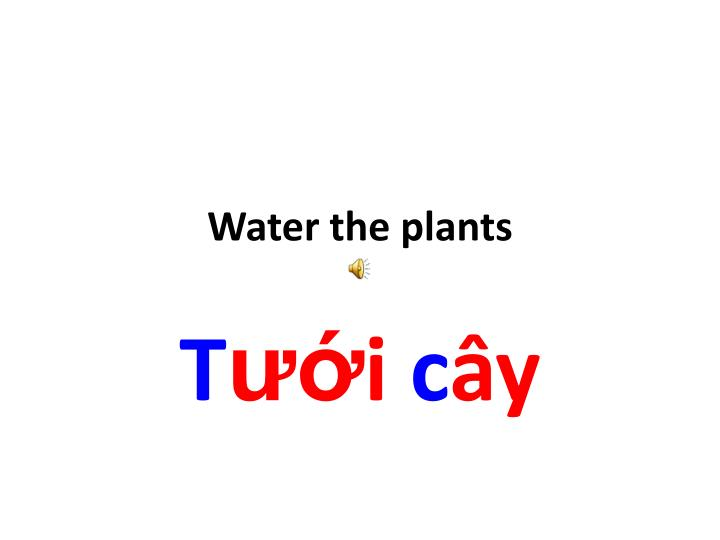 Water the plants