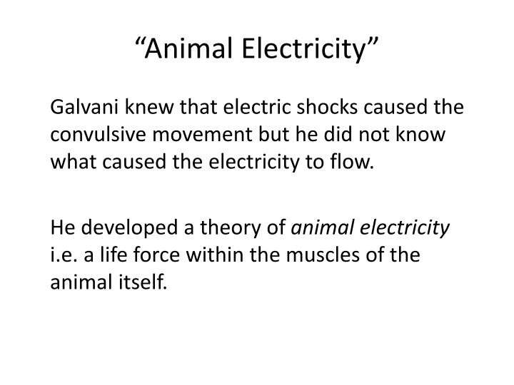 """Animal Electricity"""