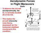 aerodynamic forces in flight maneuvers stalls3