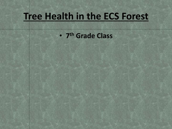 tree health in the ecs forest n.
