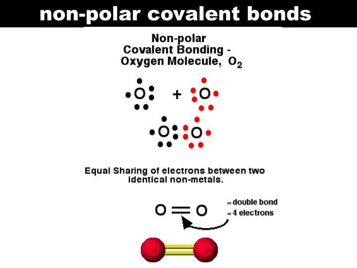 non-polar covalent bonds