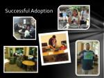 successful adoption