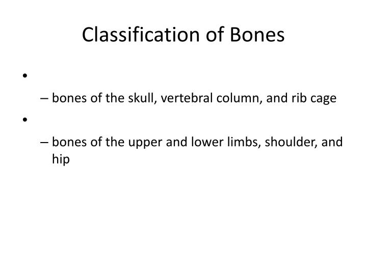 classification of bones n.