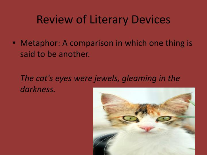 Review of literary devices2