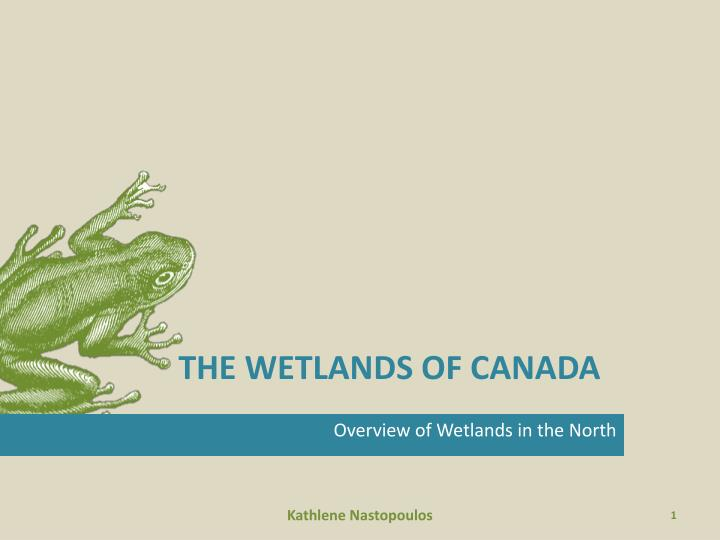 The wetlands of canada