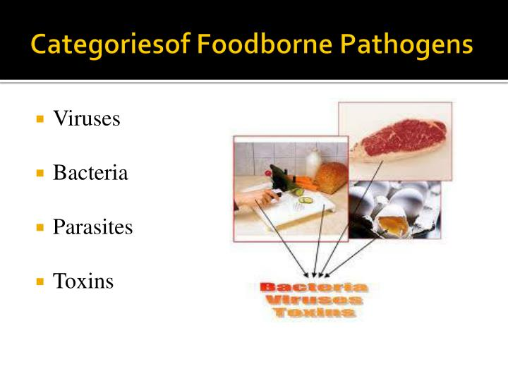 a general overview of bacteria and foodborne illnesses Presents a general overview of fi, in which illnesses generated by bacteria of  this work presents a general overview of foodborne illnesses, and particularly.