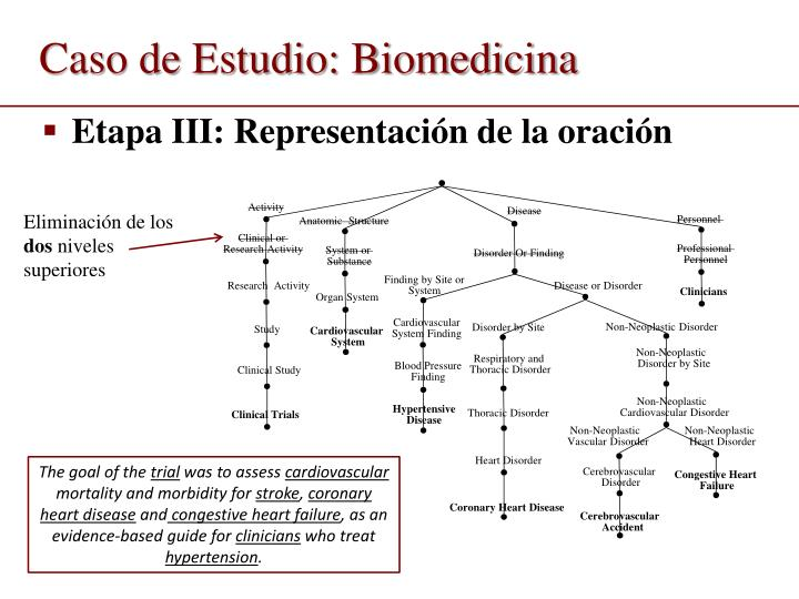 Caso de Estudio: Biomedicina