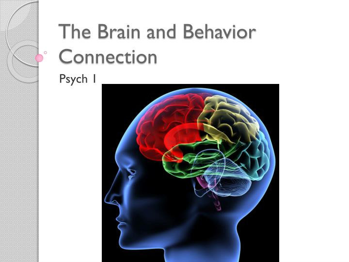 psych sim 5 brain and behavior Psychsim 5 brain and behavior answers psychsim 5 brain and behavior answers - in this site is not the same as a solution calendar you purchase in a folder accretion or download off the web our higher than 8,718 manuals and ebooks is the excuse why.