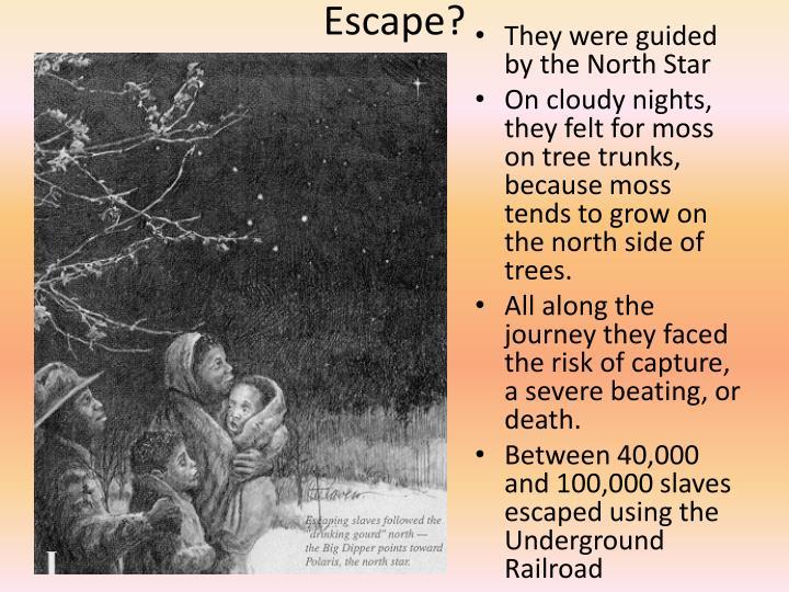Escape?
