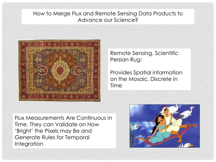 How to Merge Flux and Remote Sensing Data Products to Advance our Science?
