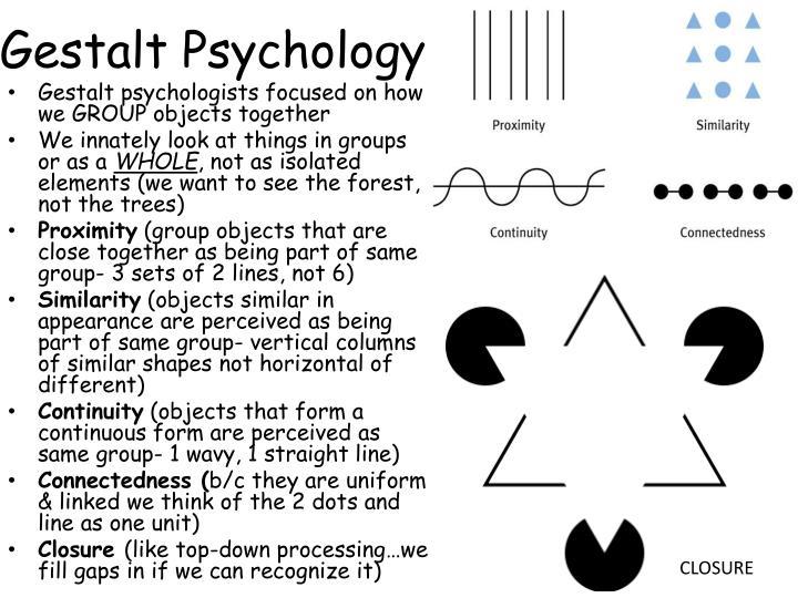 ppt - sensory adaptation powerpoint presentation