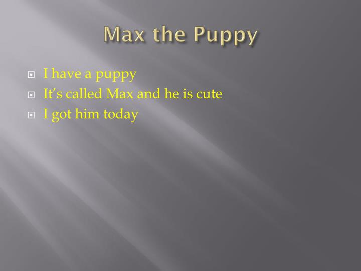 Max the Puppy