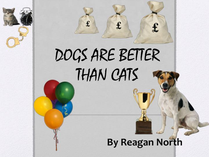 dogs are better than cats n.