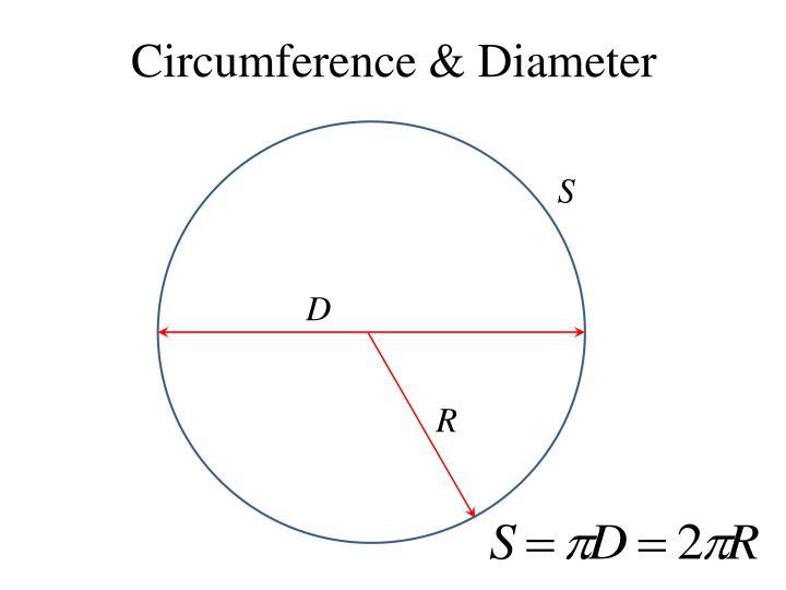 Circumference & Diameter