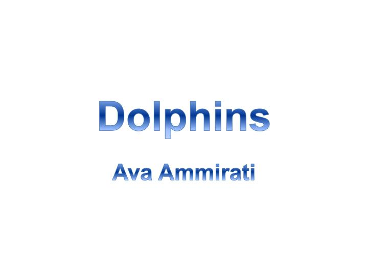 dolphins n.