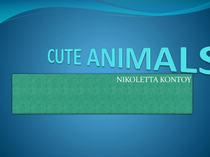 cute animals n.