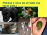 well bye these are my pets and future pets