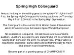 spring high colorguard