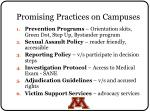 promising practices on campuses