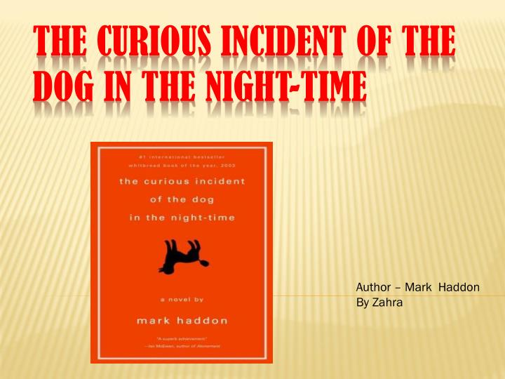 the curious incident of the dog in the night time n.