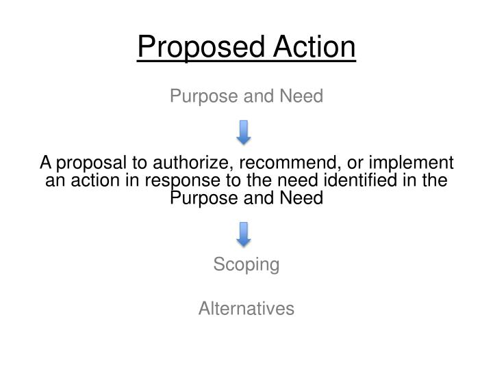 proposed action n.